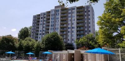 Bethesda Condo For Sale: 8315 North Brook Lane #2-1204