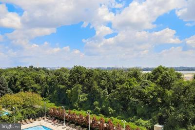 Alexandria City, Arlington County Condo For Sale: 1805 Crystal Drive #710S