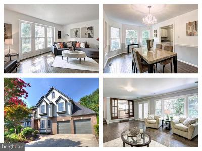 Fairfax County Single Family Home For Sale: 9439 Wooded Glen Avenue