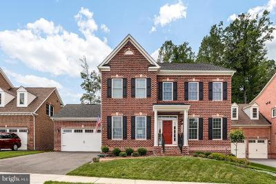 Gaithersburg Single Family Home For Sale: 406 Caulfield Lane