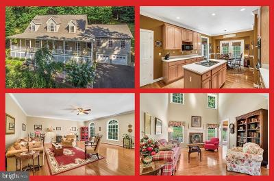 Fauquier County Single Family Home For Sale: 7375 Awsley Lane