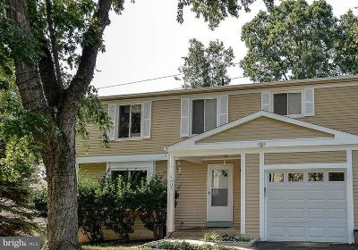 Fairfax County Single Family Home For Sale: 7605 Springfield Hills Drive