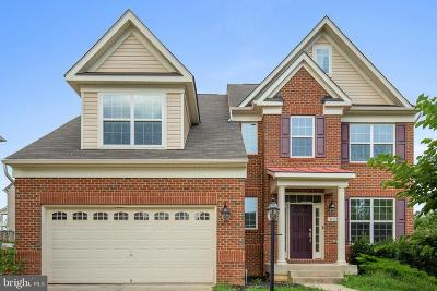 Accokeek Single Family Home For Sale: 1003 Horse Collar Road