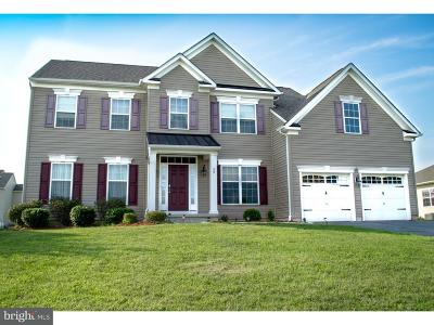 Kent County Single Family Home For Sale: 29 Sugar Maple Lane
