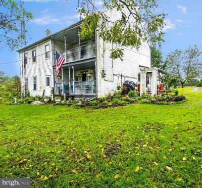 Newville Single Family Home For Sale: 175 Whiskey Run Road