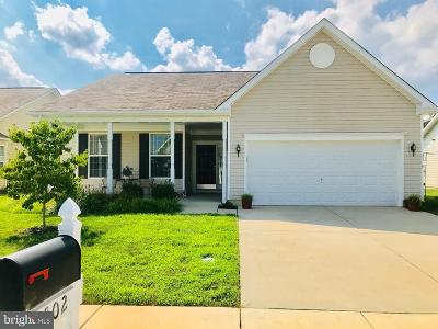 Dover Single Family Home For Sale: 302 N Red Haven Lane