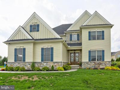 Lancaster County Single Family Home For Sale: 30 Station Stone Lane