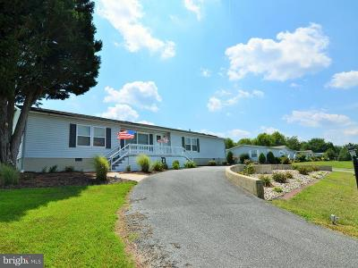 Rehoboth Beach Single Family Home For Sale: 4 Beacon Drive