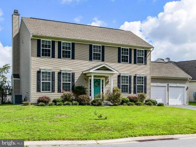 Selbyville Single Family Home For Sale: 3 Brinkley Court