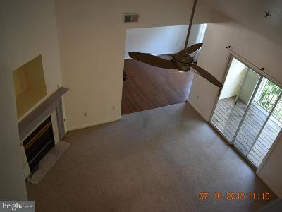 Howard County Condo For Sale: 9111 Gracious End Court #302
