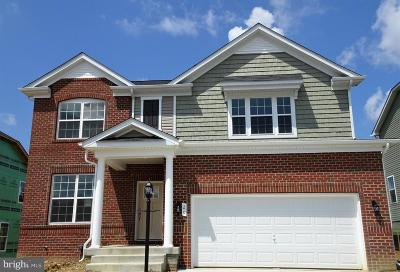 Fredericksburg City, Stafford County Single Family Home For Sale: 20 Melbourne Drive
