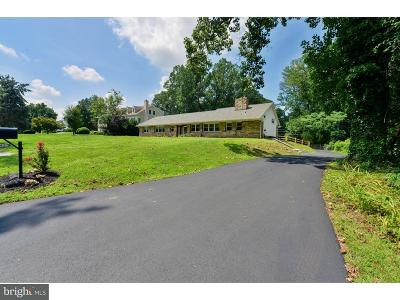 Penn Valley Single Family Home For Sale: 642 Broad Acres Road