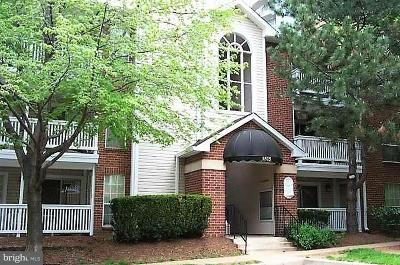 McLean VA Condo For Sale: $239,990