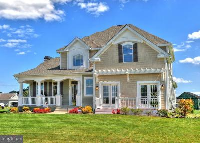 Lewes Single Family Home For Sale: 34302 Amelias Landing #THE HERO