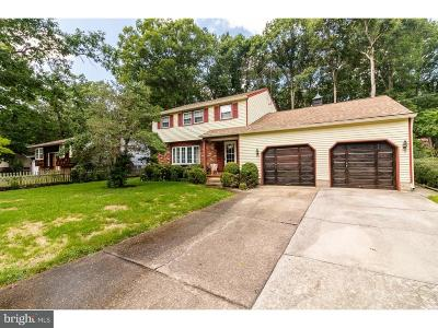 Gloucester County Single Family Home For Sale: 209 Holly Parkway