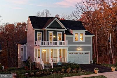 Montgomery County Single Family Home For Sale: Doc Berlin Drive