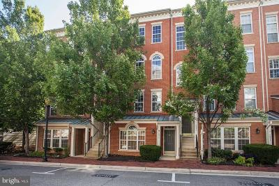 Alexandria City Condo For Sale: 5093 Donovan Drive