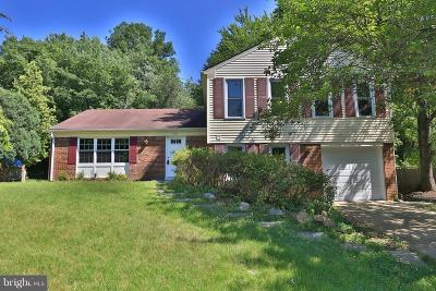 Silver Spring, Wheaton Single Family Home For Sale: 2205 Countryside Drive