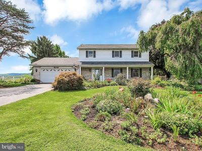 Newville Single Family Home For Sale: 2122 Pine Road