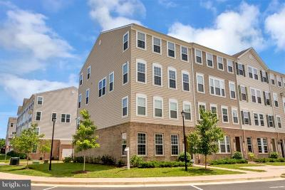 Woodbridge Condo For Sale: 14797 Mason Creek Circle