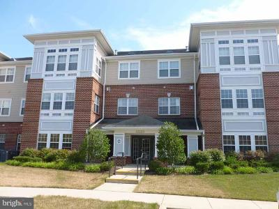 Upper Marlboro Condo For Sale: 13220 Fox Bow Drive #206