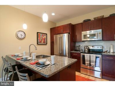Rental For Rent: 1323 West Chester Pike #263