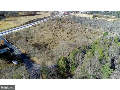 Residential Lots & Land For Sale: 1339 Centre Turnpike