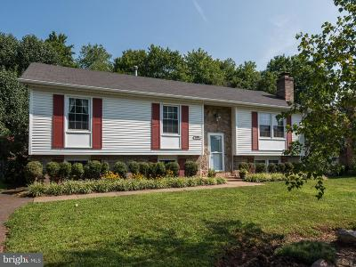 Manassas Single Family Home For Sale: 10231 Battlefield Drive