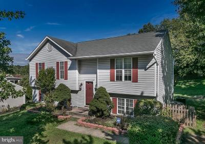 Howard County Single Family Home For Sale: 6636 Hunter Road