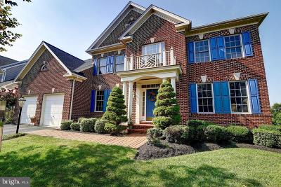 Lansdowne On The Potomac Single Family Home For Sale: 19472 Mill Dam Place