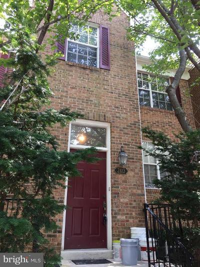 Falls Church Rental For Rent: 2103 Dominion Heights Court