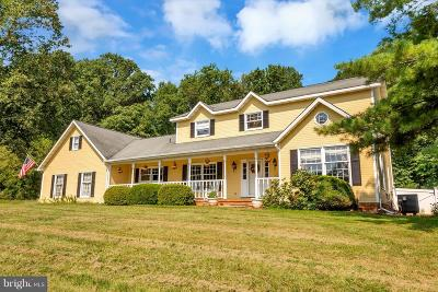 Fauquier County Single Family Home For Sale: 5060 Oatlands Lane