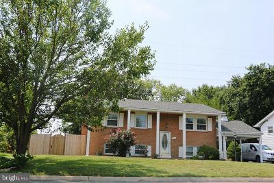Sterling Single Family Home For Sale: 316 Williamsburg Road