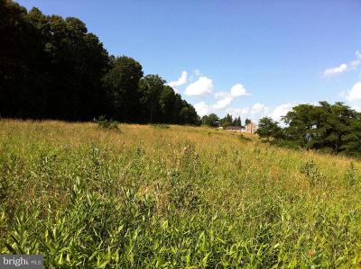 Residential Lots & Land For Sale: Martins Mountain Lane