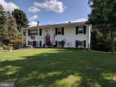 Single Family Home For Sale: 4460 Valley Road