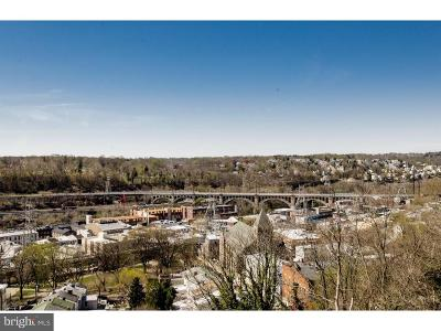 Manayunk Townhouse For Sale: 4160 Terrace Street