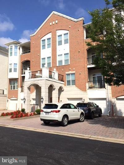 Howard County Condo For Sale: 5910 Great Star Drive #207