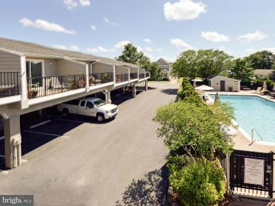 Rehoboth Beach Condo For Sale: 235 Country Club Drive #406