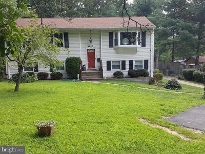 Annandale Single Family Home For Sale: 4605 Medford Drive