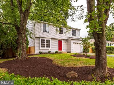 Chantilly Single Family Home For Sale: 4511 Cub Run Road
