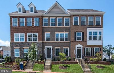Montgomery County Townhouse For Sale: 12885 Clarksburg Square Road