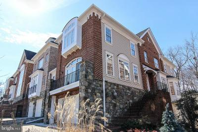 Leesburg Townhouse For Sale: 18229 Cypress Point Terrace