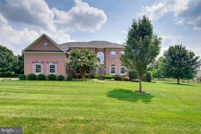 Baltimore County Single Family Home For Sale: 859 Boxer Hill Road