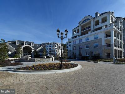 Washington County, Montgomery County, Fairfax County Rental For Rent: 8111 River Road #122