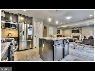 Owings Mills Single Family Home For Sale: 9805 Bridle Brook Drive