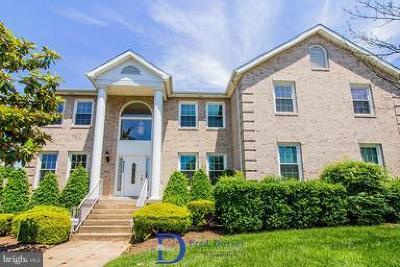 Prince Georges County Single Family Home For Sale: 8822 Glenarden Parkway