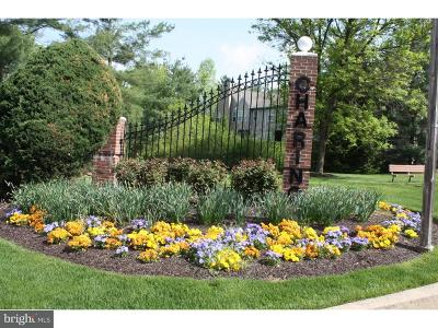 Doylestown Condo For Sale: 125 Blackfriars Circle #92