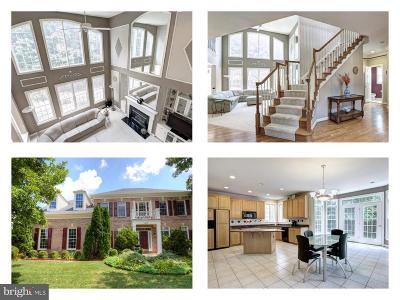 Fairfax County Single Family Home For Sale: 6839 Creek Crest Way