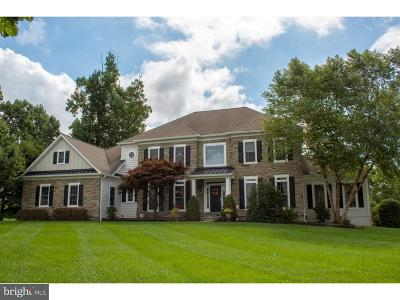 Downingtown Single Family Home For Sale: 307 Harcourt Lane