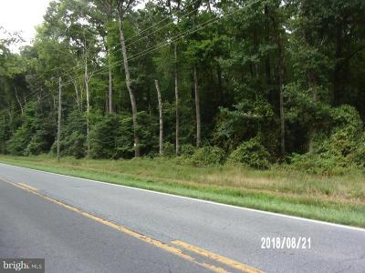Sussex County Residential Lots & Land For Sale: 431 S Shortly Road
